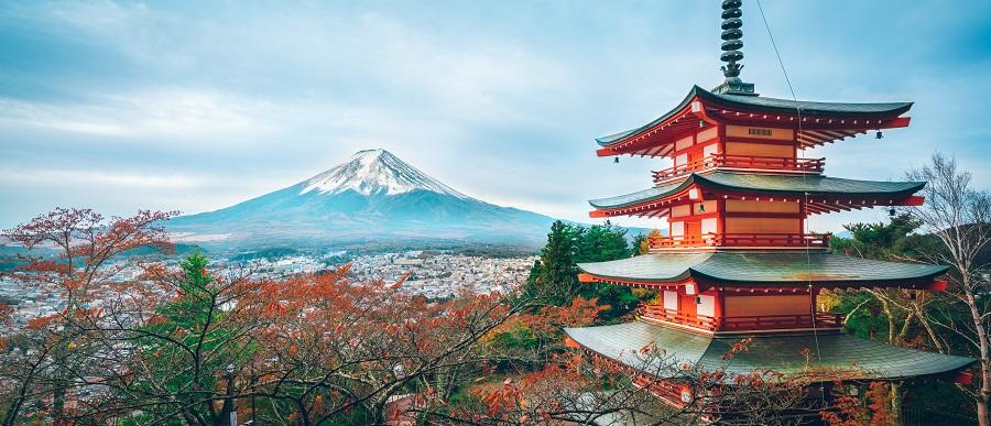 Авиадоставка из Японии